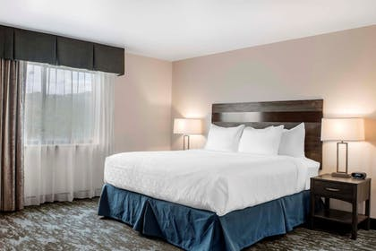 Guestroom | Copper King Convention Center, Ascend Hotel Collection