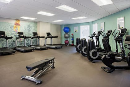 Fitness Facility | The Westin Tampa Waterside
