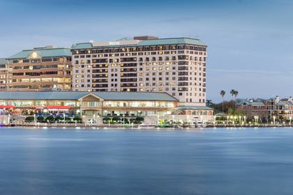 | The Westin Tampa Waterside