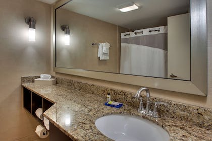 Bathroom | Holiday Inn Express Baltimore-BWI Airport West