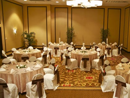 Meeting Facility | Holiday Inn Knoxville Downtown