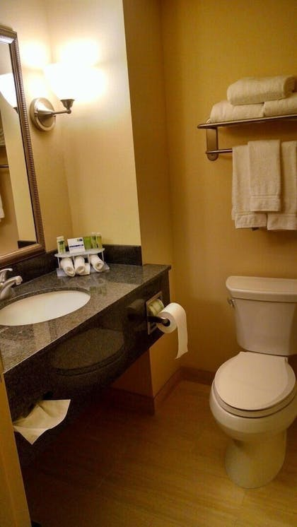 Bathroom | Holiday Inn Express & Suites Milford