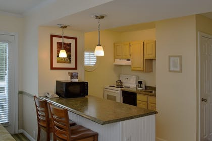 In-Room Kitchen | The Spa at Norwich Inn