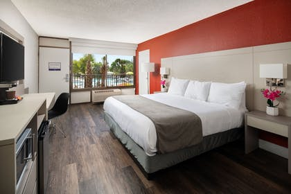 Guestroom | Avanti Palms Resort and Conference Center