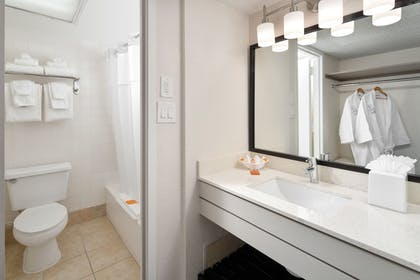 Bathroom | Avanti Palms Resort and Conference Center