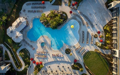 Pool | Avanti Palms Resort and Conference Center