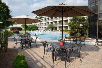 Outdoor Pool | Sheraton Chapel Hill Hotel