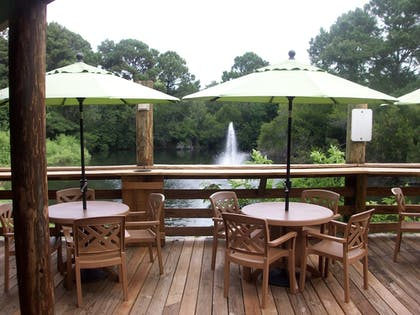 Outdoor Dining | Hilton Head Island Beach & Tennis Resort