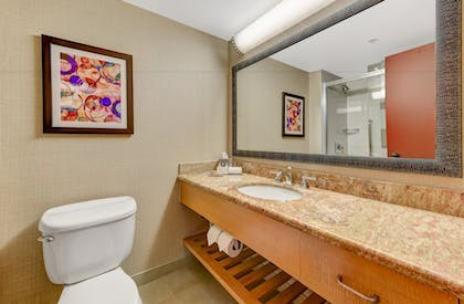 | 1 King Bed Studio Suite with Sofabed | DoubleTree by Hilton Hotel Anaheim - Orange County