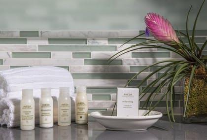 Bathroom Amenities | The Palms Hotel & Spa