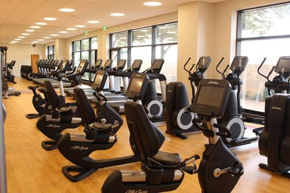 Sports Facility | Sheraton Suites Chicago O'Hare