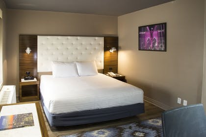 Guestroom | The Gallivant Times Square