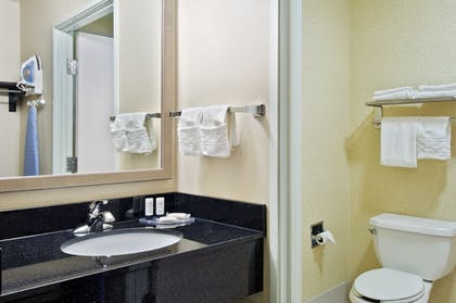 Bathroom | Fairfield Inn and Suites By Marriott Merrillville