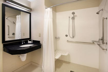 Bathroom Shower | Fairfield Inn and Suites By Marriott Merrillville