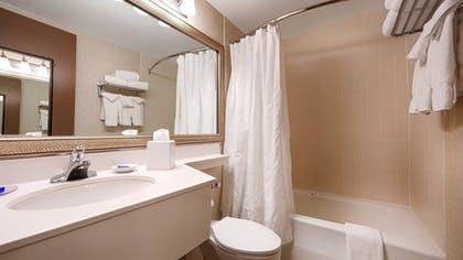 Bathroom | Best Western Plus Chelmsford Inn