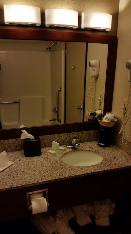 Bathroom | Comfort Inn Moline - Quad Cities