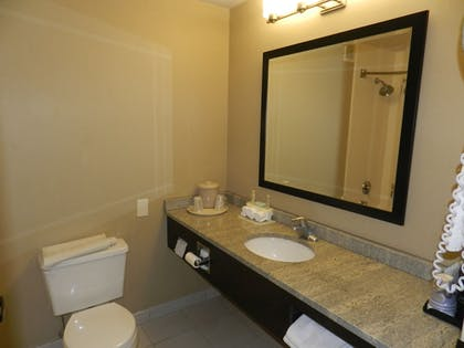 Guestroom | Holiday Inn Express Anderson