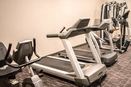Gym | Holiday Inn Express and Suites Albany Airport- Wolf Road