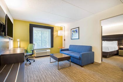 Living Room | Holiday Inn Express and Suites Albany Airport- Wolf Road