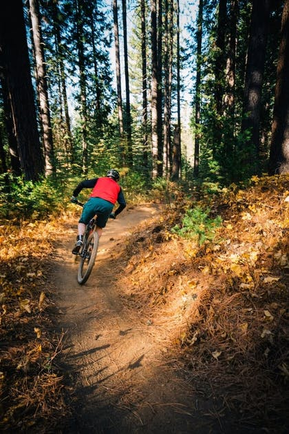 Bicycling | Best Western Plus Tree House