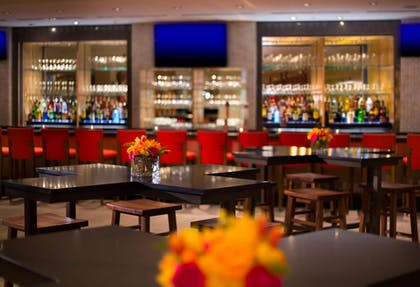 Bar | Hilton Sandestin Beach Golf Resort & Spa