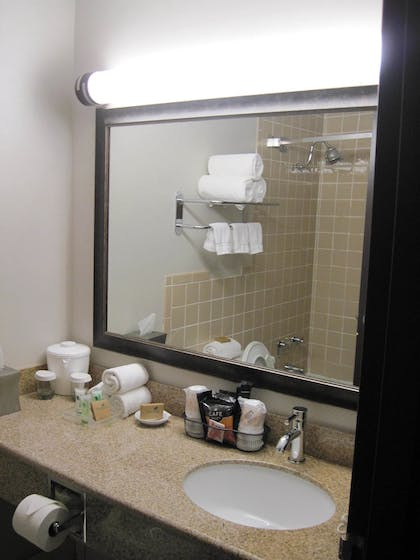 Bathroom Sink | Best Western Plus Kingston Hotel And Conference Center
