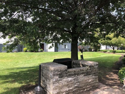 BBQ/Picnic Area | Albany Airport Inn and Suites