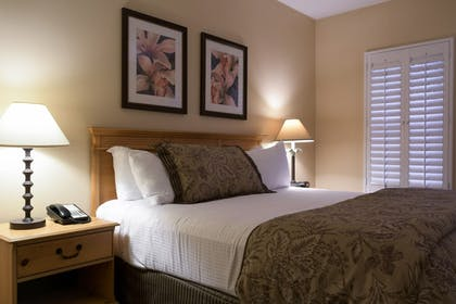 | Deluxe Suite, 1 King Bed | Pacifica Suites