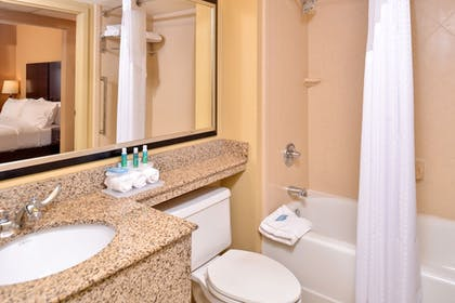 Bathroom | Holiday Inn Express & Suites Buffalo Downtown - Medical CTR