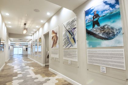 Hallway | Guy Harvey Resort on St Augustine Beach