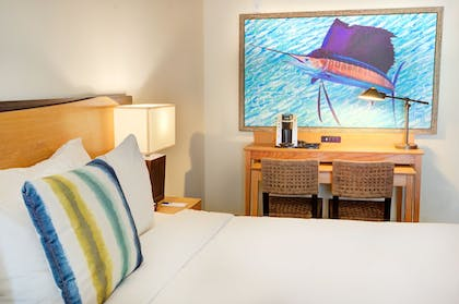 In-Room Amenity | Guy Harvey Resort on St Augustine Beach