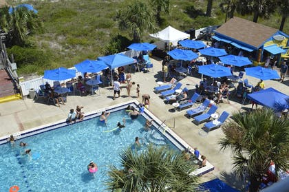 Poolside Bar | Guy Harvey Resort on St Augustine Beach
