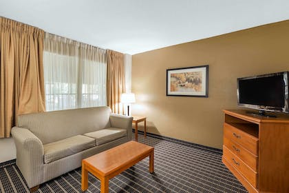 Room   Quality Inn & Suites Sevierville - Pigeon Forge
