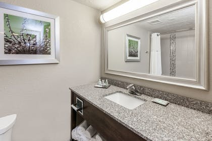 In-Room Amenity | Holiday Inn Hotel & Suites Oklahoma City North