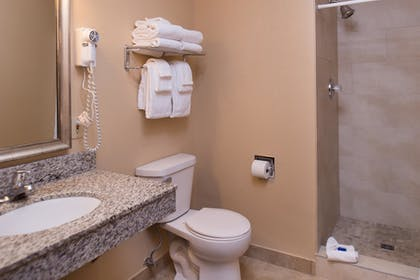 Bathroom | Best Western Ambassador Inn & Suites