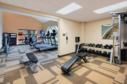 Fitness Facility | Courtyard by Marriott Addison Midway