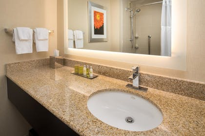 Bathroom |  | DoubleTree by Hilton San Francisco Airport