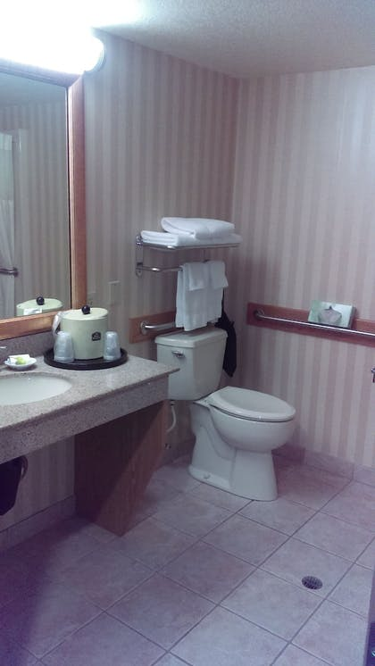 Bathroom Sink | Best Western Plus Landmark Inn