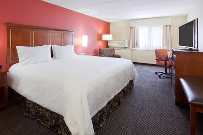 Guestroom | Best Western Plus St. Paul North/Shoreview