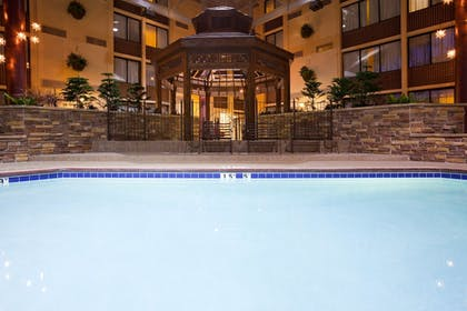Pool   Holiday Inn Bloomington Airport South Mall Area