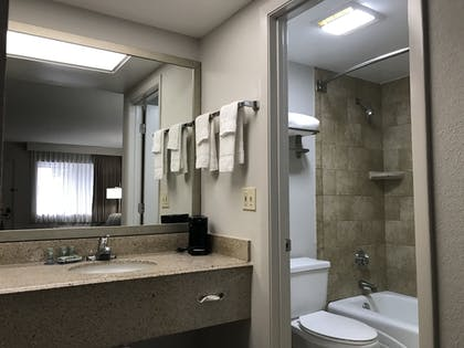 Bathroom | Best Western Inn Of Palatka