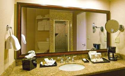 Bathroom | Best Western Plus Island Palms Hotel & Marina