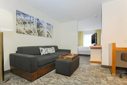 Living Area | Springhill Suites By Marriott Houston Brookhollow