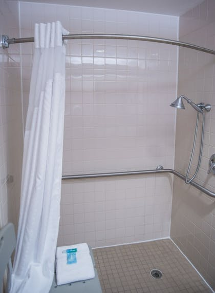 Bathroom Shower   Holiday Inn Express Hotel & Suites Conover (Hickory Area)