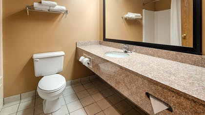Bathroom | Best Western Plaza Hotel Saugatuck