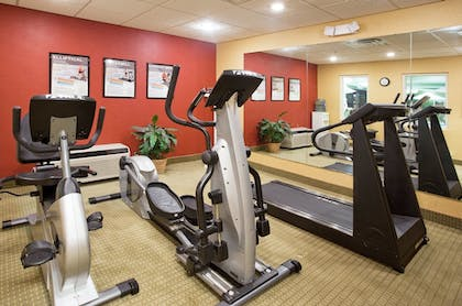 Fitness Facility | Holiday Inn Express Hotel & Suites Troy