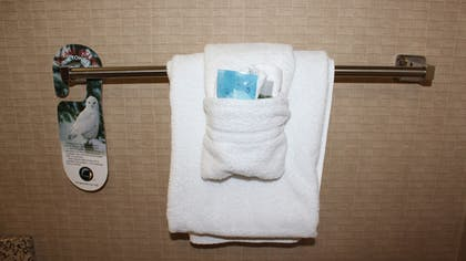 In-Room Amenity | Holiday Inn Express Hotel & Suites Troy