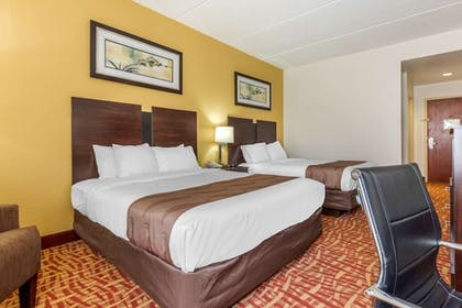 Room | Quality Inn & Suites