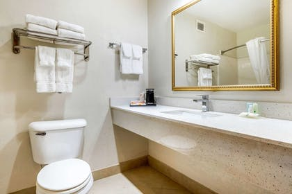 Bathroom | Quality Inn & Suites