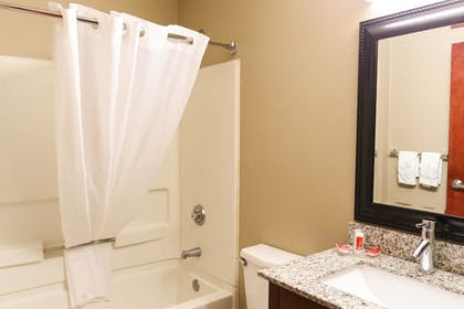 Bathroom | Econo Lodge & Suites Greenville
